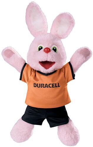 Батарейки Duracell Basic D K2 (4)
