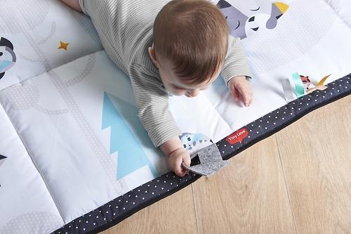 Развивающий коврик Tiny Love День и ночь - Путешественник (11)
