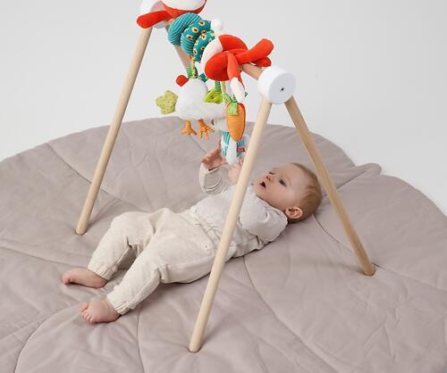 Развивающий турничок Happy Baby Toybar White (19)