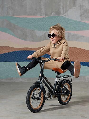 Велосипед Happy Baby VOYAGE 50024 Black (24)