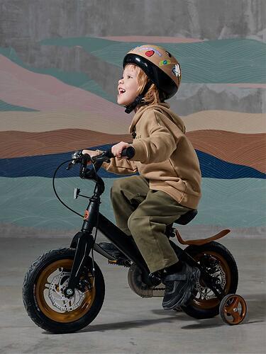Велосипед Happy Baby TOURISTER 50025 Black (18)
