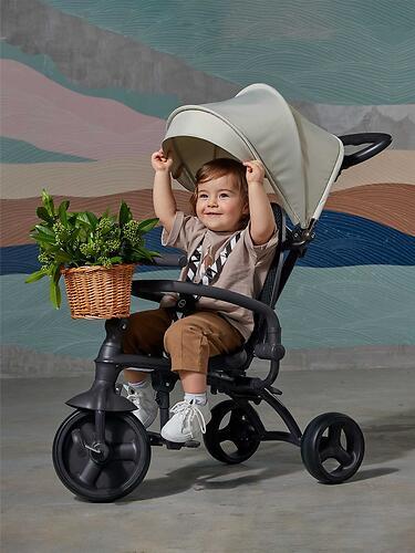 Велосипед Happy Baby Mercury Black (36)