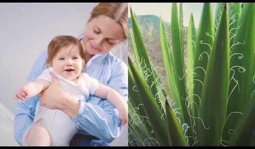 Матрас детский Plitex Eco Flex Cotton (14)